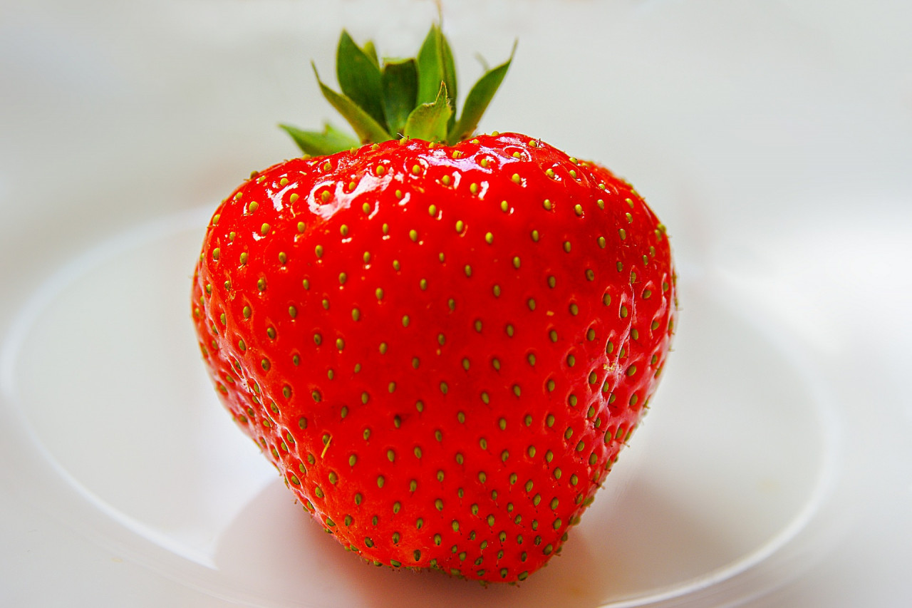 strawberry-361597_1920