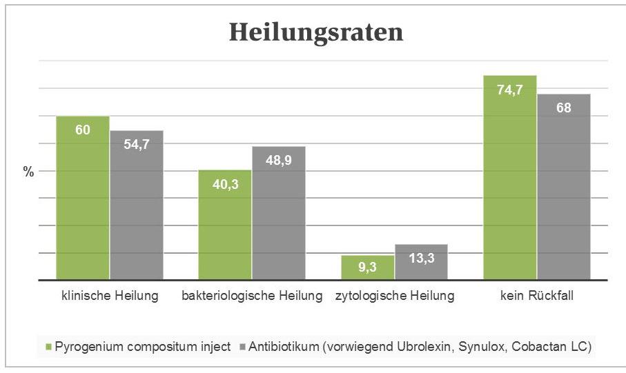 Studie Pyrogenium
