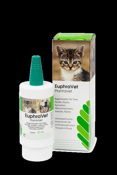 EuphraVet® PlantaVet - Augentropfen Pumpspender 10 ml