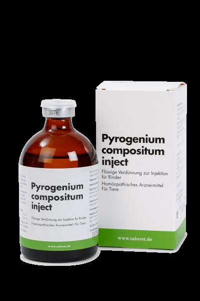 Pyrogenium comp. inject - Durchstechflasche
