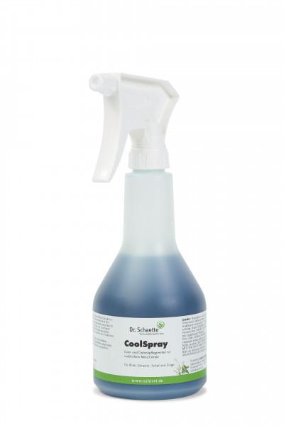 CoolSpray 500 ml Sprühflasche