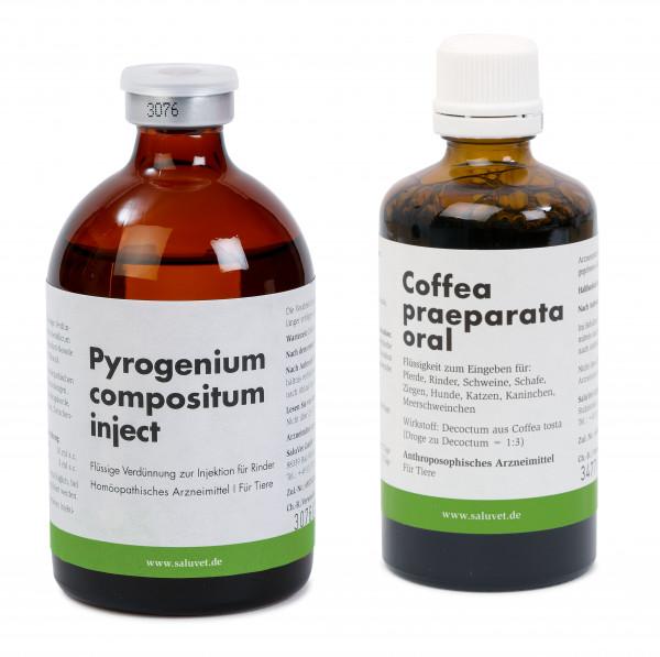 Pyrogenium compositum inject + Coffea praeparata oral Flasche je 100 ml