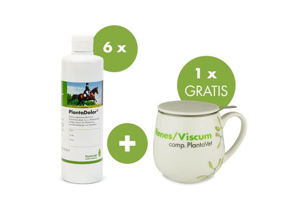 PlantaDolor mit Gratis-Tasse Renes/Viscum